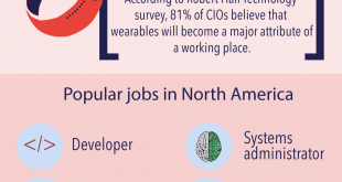 IT Jobs Trends