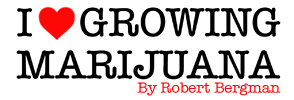 how-to-grow-marijuana-by-robert-bergman
