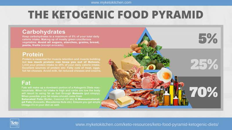 The Ketogenic Diet Food Pyramid – Infographic Portal