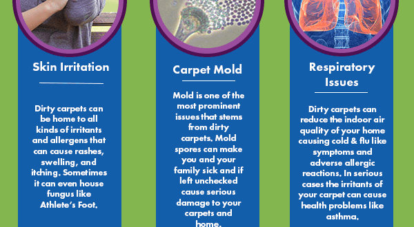 Carpet Mold Symptoms Home The Honoroak