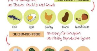 What-to-eat-when-trying-to-get-pregnant
