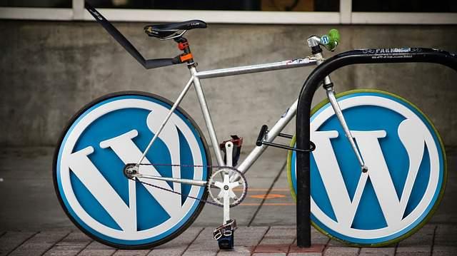 wordpress-logo-icon