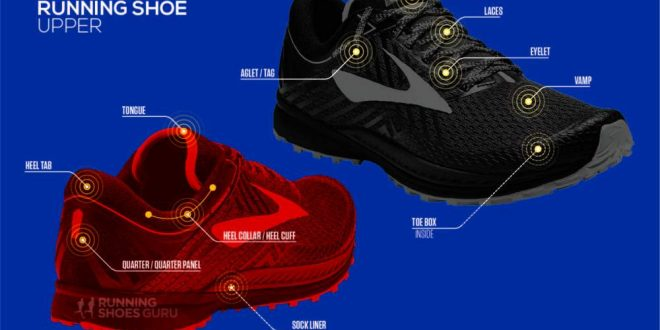 Anatomy of a Running Shoe – Infographic Portal